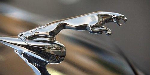 Automobilska marka Jaguar