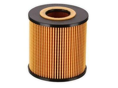 Filter goriva TQ-FE047 - BMW X5 01-03