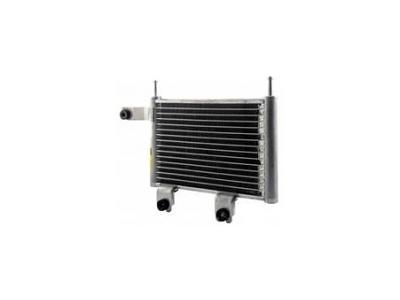 Hladilnik olja 4075L81X - Hyundai Trajet 00-08