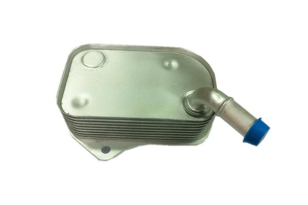Hladilnik olja Audi A4 00-04, 06B117021