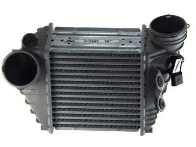 Hladilnik zraka 1323J82X - Audi A3 00-03