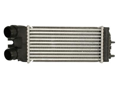Hladnjak vazduha Citroen Berlingo 2005- 300 x 147
