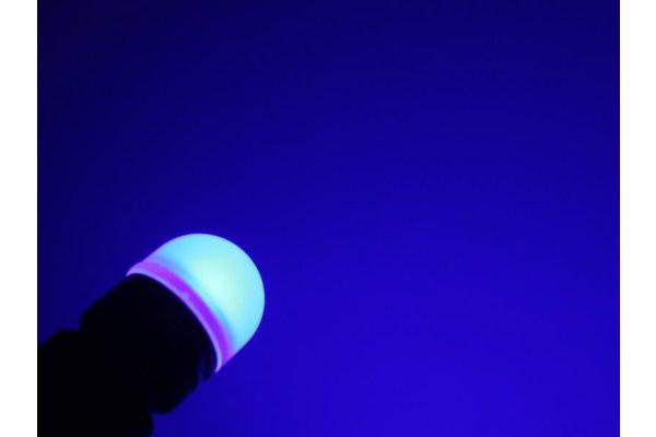 LED žarulje T10, 09-16V, 1xSMD, 2 komada, 12 mjeseci garancija, PREMIUM