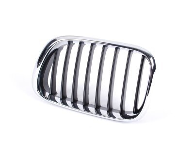 Maska (ledvička) BMW X5 00-03