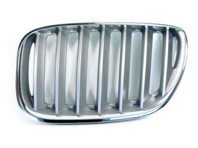 Maska (ledvička) BMW X5 00-03 Titan look
