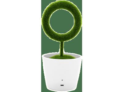 Moderni čistilec zraka Lončnica, ionizacija, odstranjuje nezaželene vonjave in cvetni prah