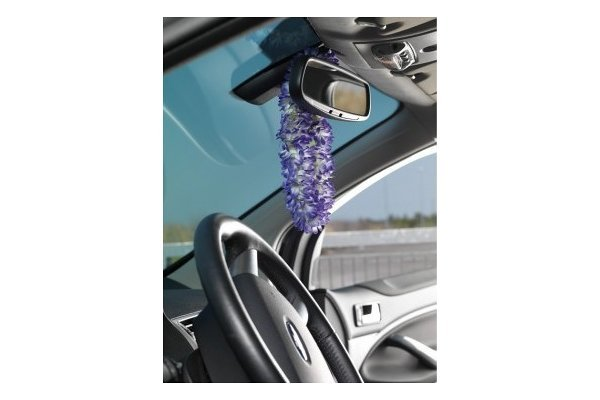 Okras za notranjost avtomobila, Hawaii Purple Necklace, vijolična