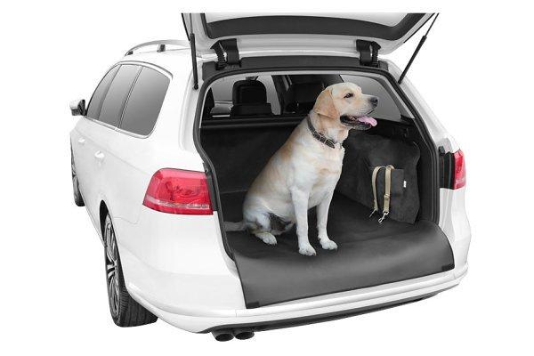 Prevleka za prevoz hišnih ljubljenčkov, Kegel Dexter SUV