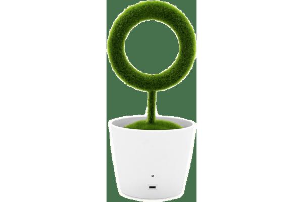 Savremeni filter vazduha Saksijsko cveće, jonizacije, uklanja neželjene mirise i polen + Besplatna dostava